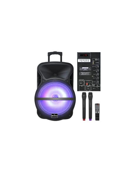 Автономная акустическая система BIG BIG300BAT