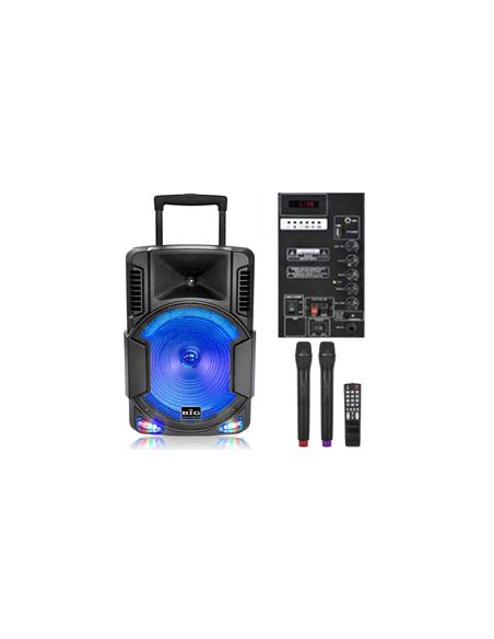 Автономная акустическая система BIG BIG230BAT