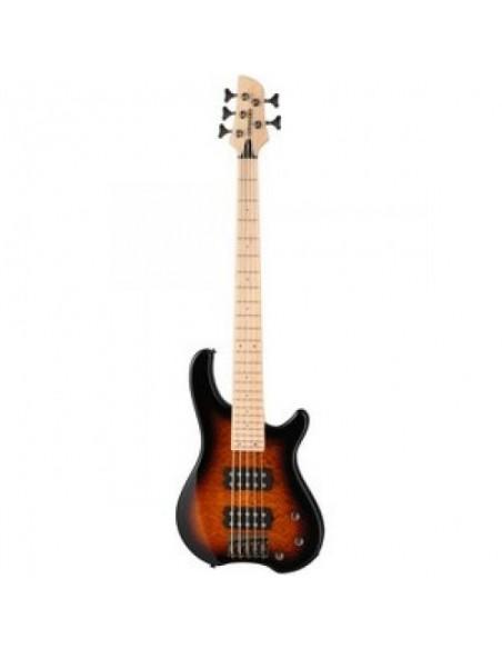 Бас-гитара FERNANDES Tremor 5X TS