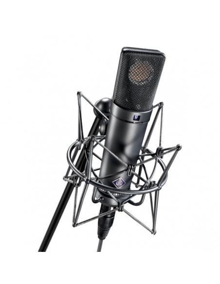 Neumann U 89 I mt Универсальный студийный микрофон